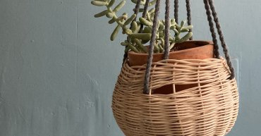 Hanging woven basket holding a plant